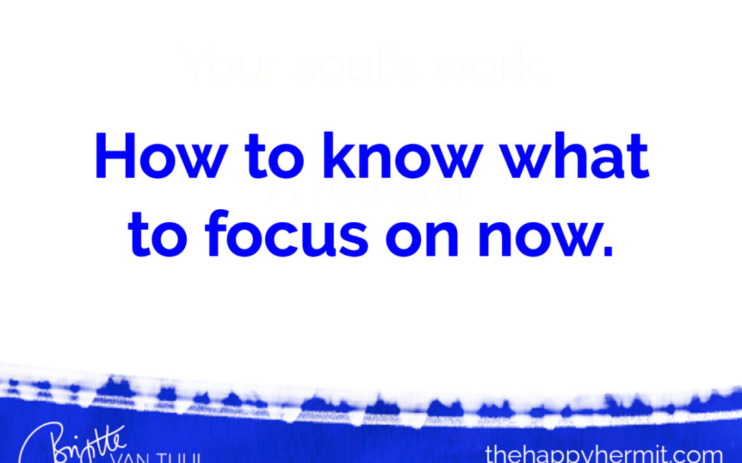 How to know what to focus on now