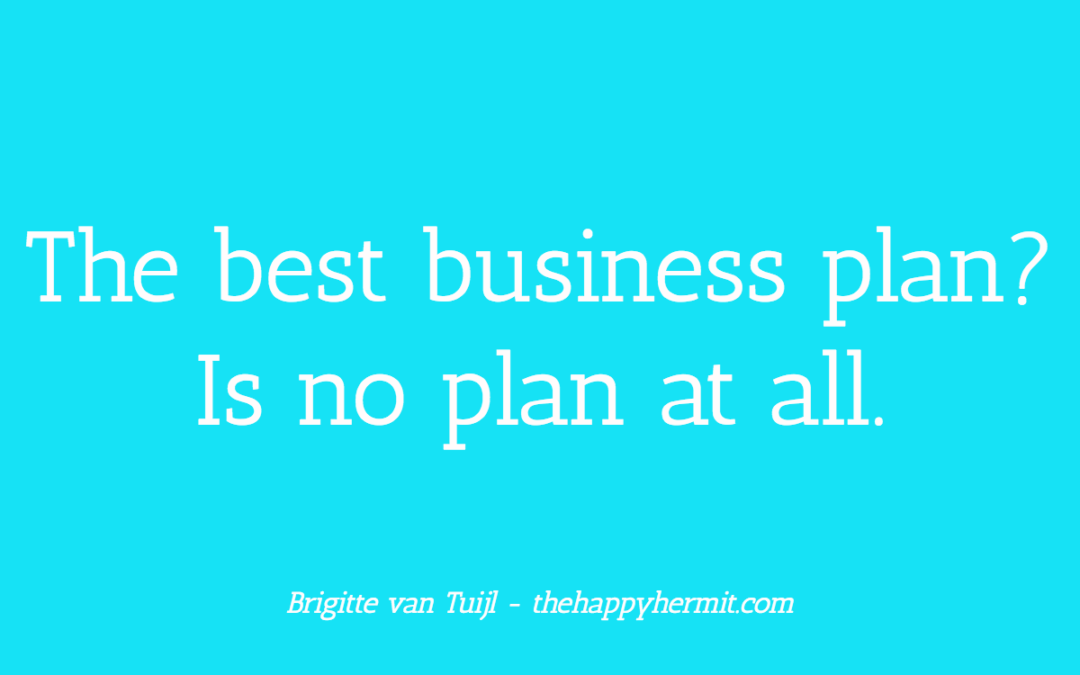 The best business plan? Is no plan at all.