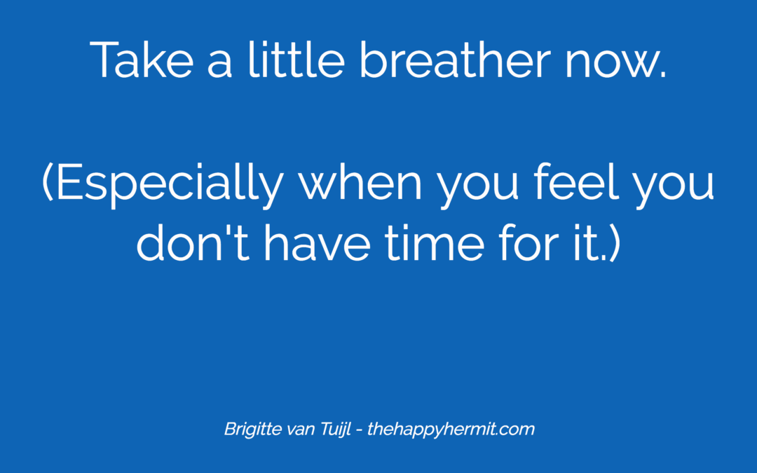 Take a little breather now. (Especially when you feel you don't have time for it.)