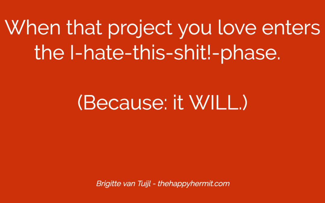 When that project you love enters the I-hate-this-shit!-phase. (Because: it WILL.)