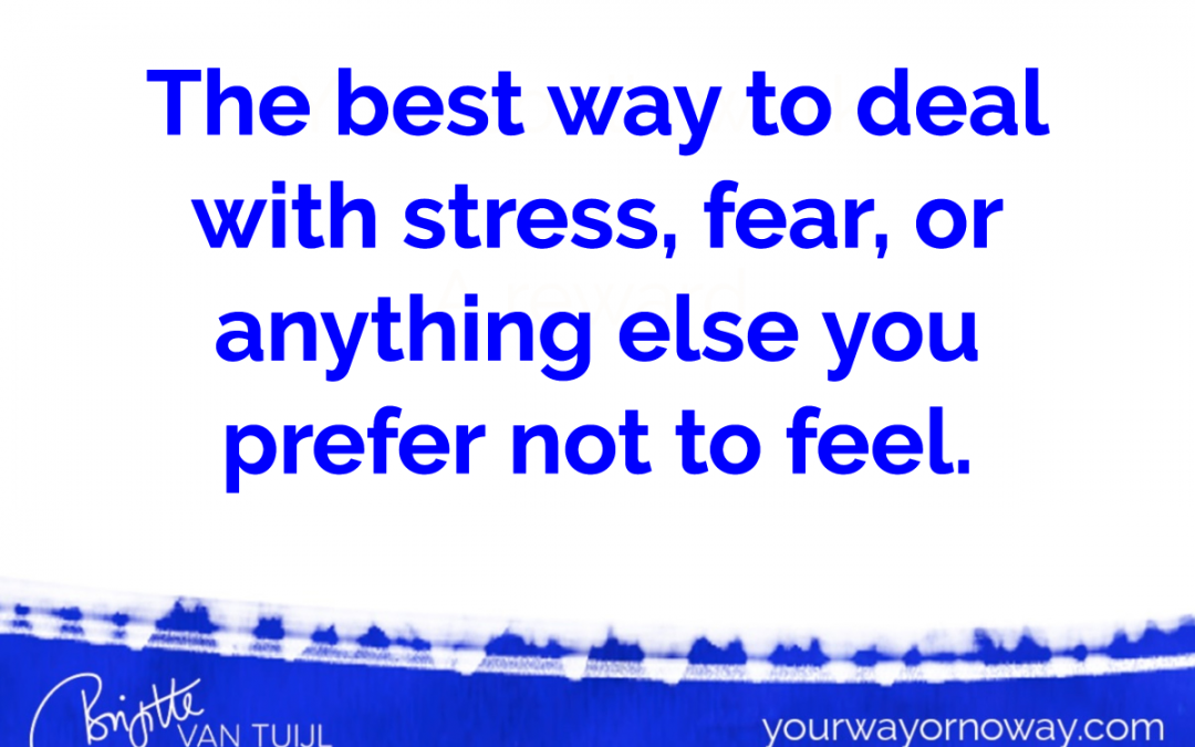 The best way to deal with stress, fear, or anything else you prefer not to feel.