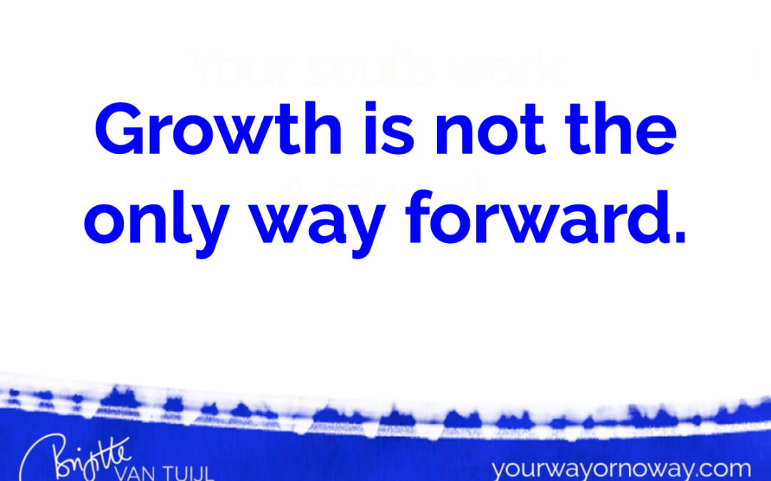 Growth is not the only way forward.