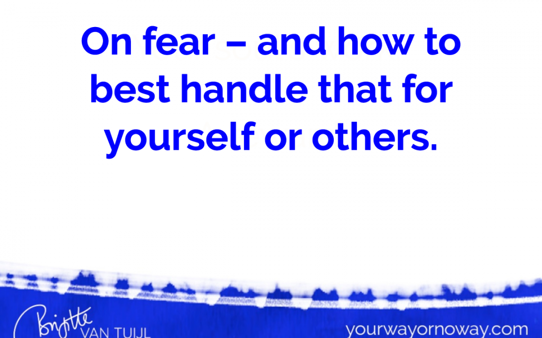 On fear – and how to best handle that for yourself or others.