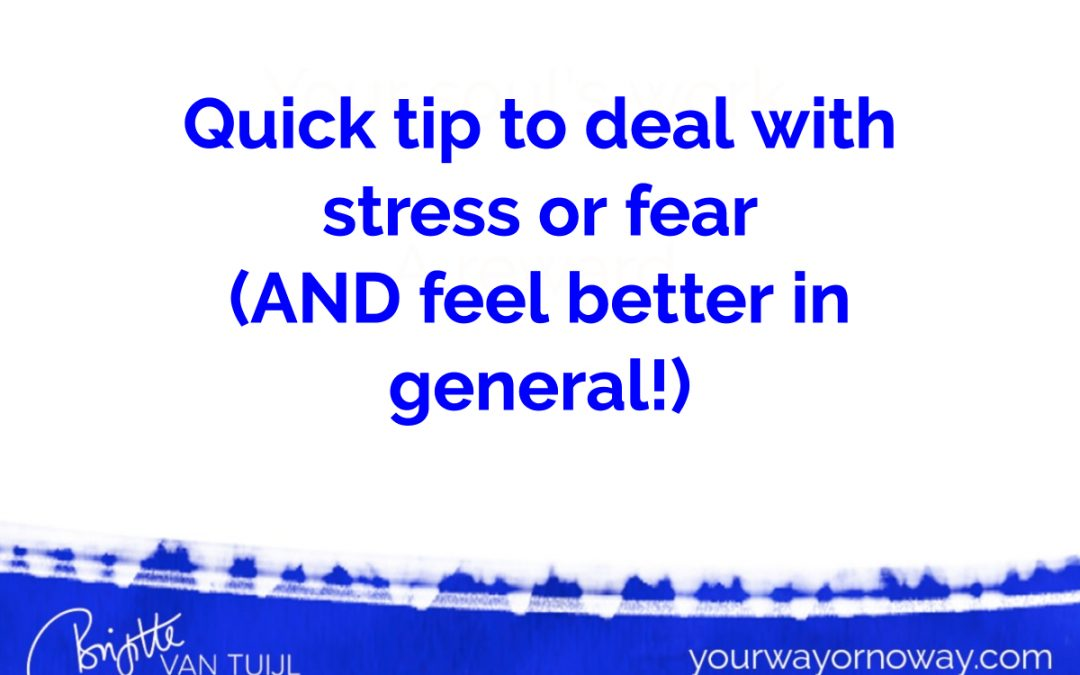 Quick tip to deal with stress or fear (AND feel better in general!)