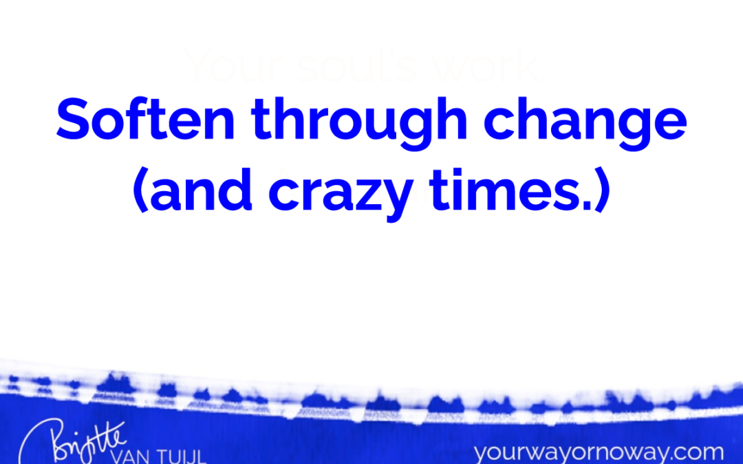 Soften through change (and crazy times.)